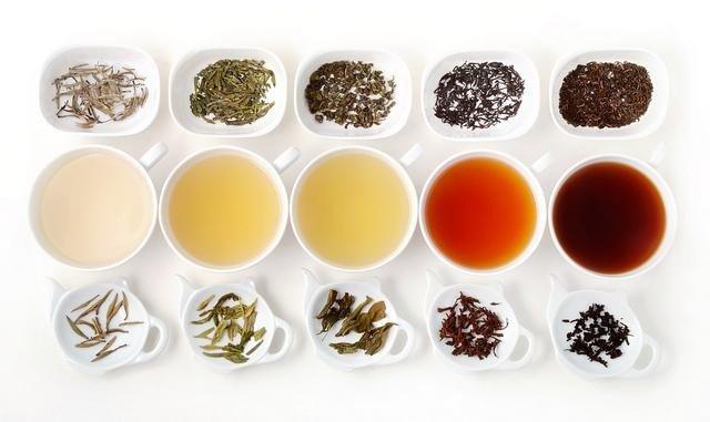 Os melhores chás para ajudar você a perder peso e melhorar de vida 3