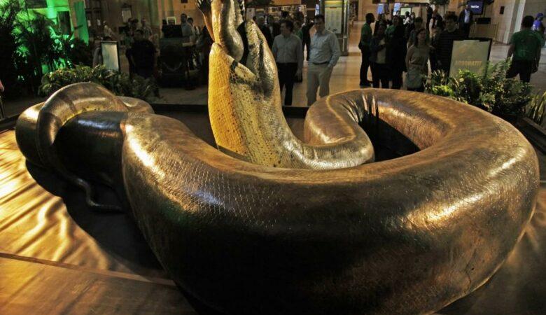 A Serpente Enorme que Amedrontou o Mundo 13