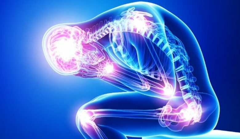 2 Extremos Fatais e como Nosso corpo Reage a eles 14