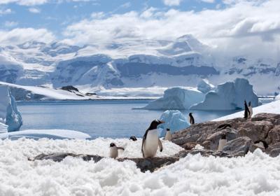 Antártida: 8 Mistérios encontrados sinistros 11