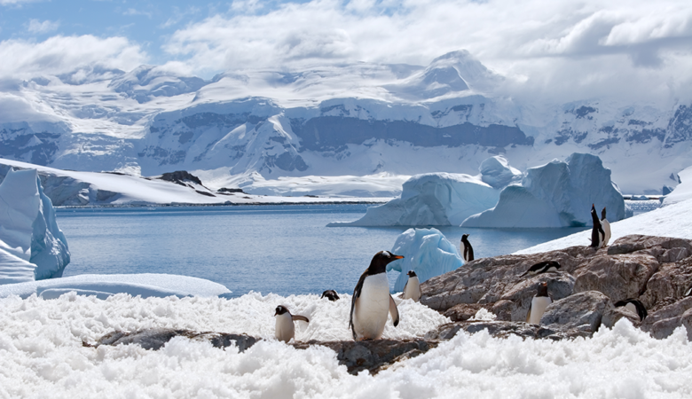 Antártida: 8 Mistérios encontrados sinistros 39