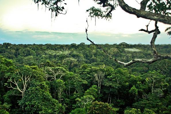 Inexplorados: 10 regiões magníficos no Mundo 26