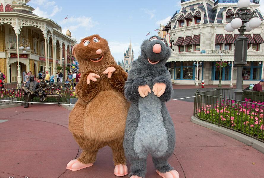 'Ratatouille (inauguração 1 de outubro de 2021') na Disney World 13